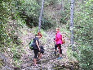 Por la senda, camino del Chorro de Fornós