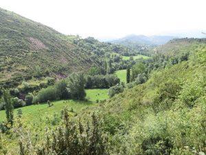 Valle en el Alto Isábena