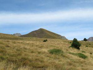 Ya asoma el Pico Comodoto